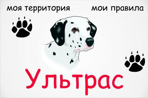 Ультрас пёс