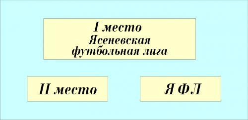 ЯФЛ шильд