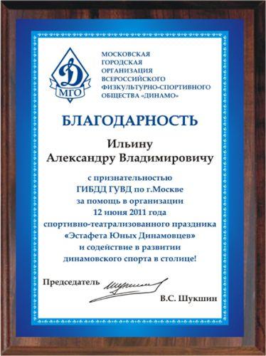 Диплом Динамо