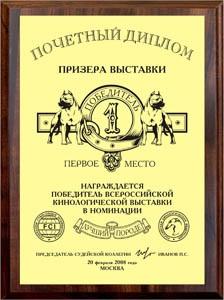 диплом призёр
