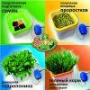 Домашняя гидропонная установка Здоровья Клад автоматический спраутер проращиватель семян и зёрен
