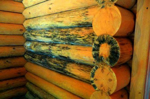 Почерневшая древесина