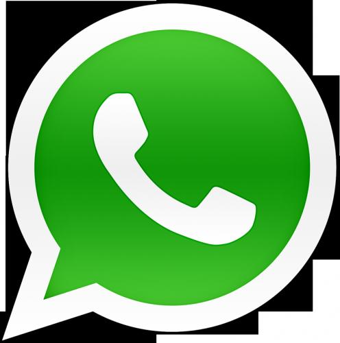 WhatsApp Палитра здоровья