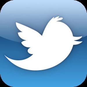 Палитра здоровья twitter
