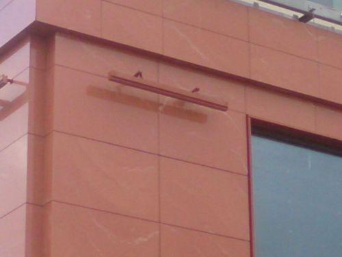 Н.60х120.Фасад-1Н