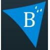 Пленка Brane B (Брейн), паро-изоляция, подкровельная пленка