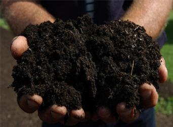 organic-compost2