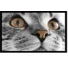 Коврик DECO-UP без борд. 50*75см Кыся (Casa-cat-Е)