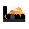 Catislove.ru - Гостиница для кошек